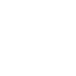 Paddy Power Casino logo